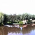 Wetering 3